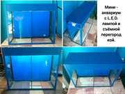 Мини-аквариум с лампой и съёмной перегородкой.